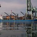 写真: Bulk carrier - SUNRISE MIYAJIMA