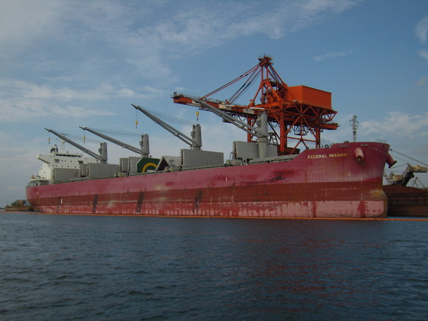 Bulk carrier - FEDERAL IMABARI