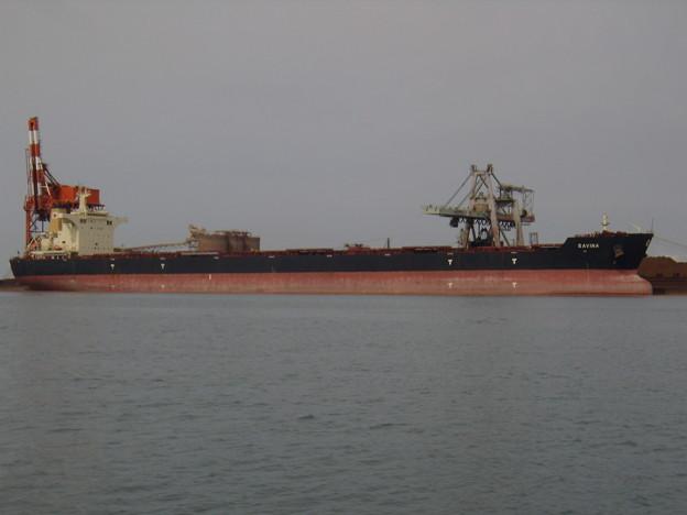 Bulk carrier - SAVINA