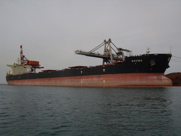 Bulk carrier - SAVINA の近影