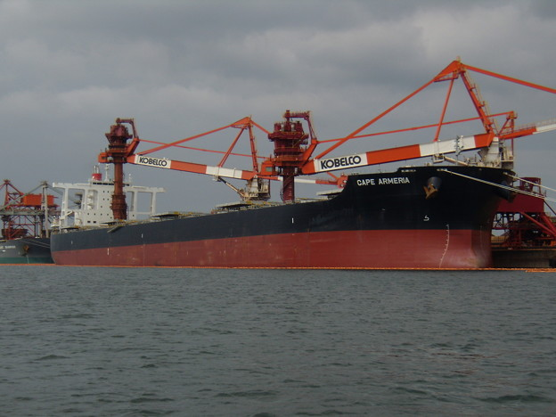 Bulk carrier - CAPE ARMERIA の近影