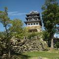 Photos: 夏の終わりの洲本城