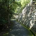 洲本城への道