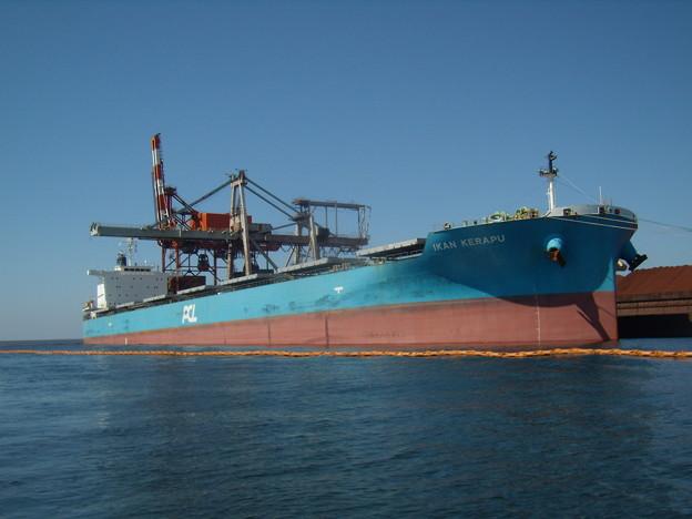 Bulk carrier - IKAN KERAPU の近影