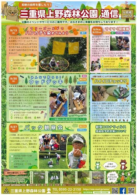 上野森林公園通信
