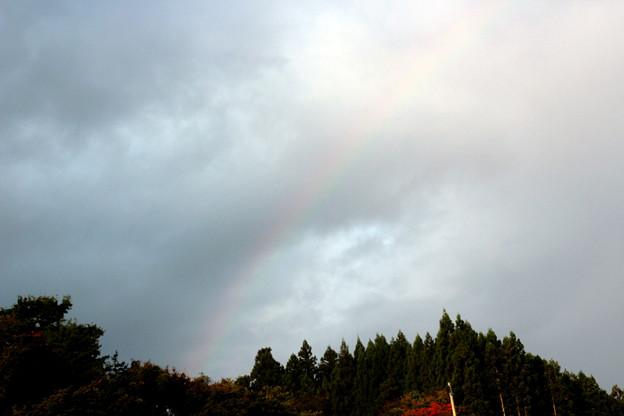 うっすらな虹