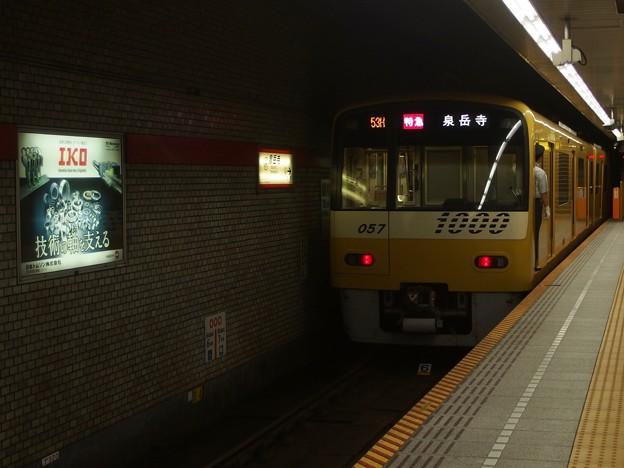 P8135290