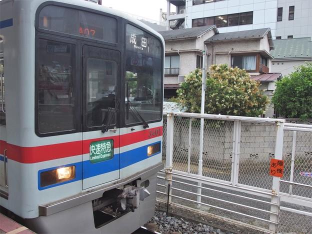 P6016152
