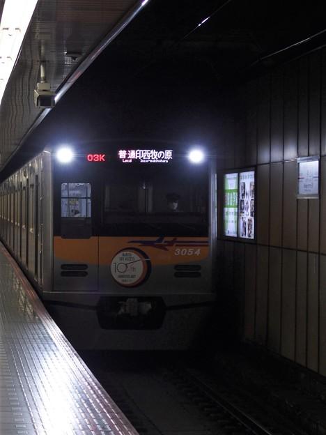 PA116233