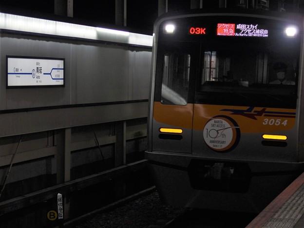 PA115975