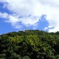 葉山農園風景2(縮小)