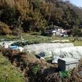 葉山農園風景1(縮小)