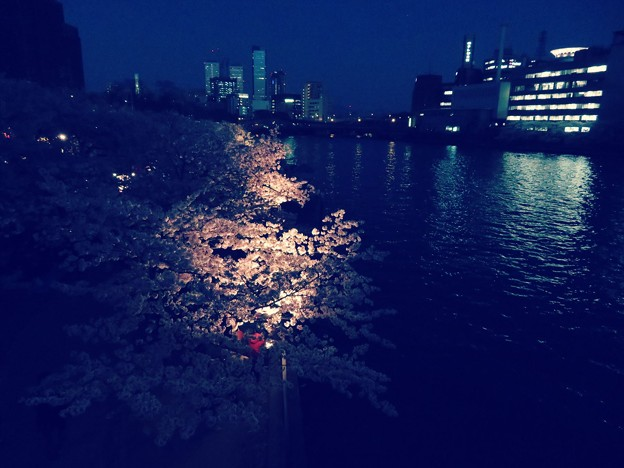 キヤノンSX720HSのクリエイティブショットで撮影した「造幣局 桜の通り抜け」