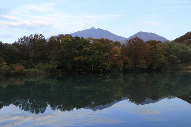 雨飾山麓しろ池の森