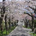 Photos: 住三吉神社