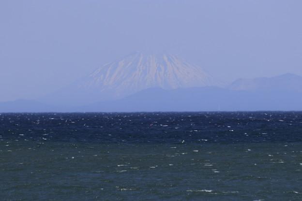 噴火湾越しに望む羊蹄山