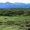 Photos: お花畑の向こうに東大雪の山並みを望む