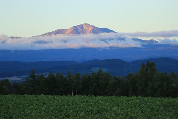 写真: 就実の丘から旭岳を望む