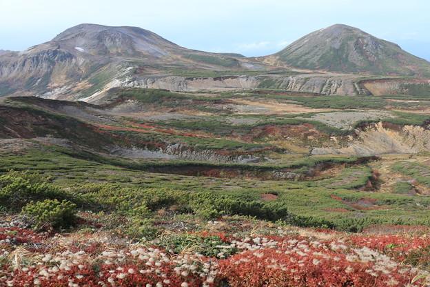 北鎮岳とチングルマの草紅葉