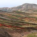 北鎮岳と紅葉