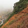 Photos: 中岳温泉の紅葉