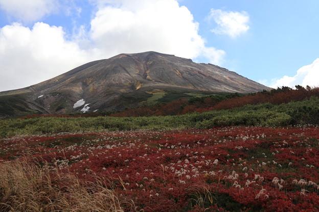 旭岳と紅葉