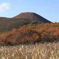 海向山と紅葉
