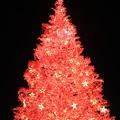 Photos: はこだてクリスマスファンタジー