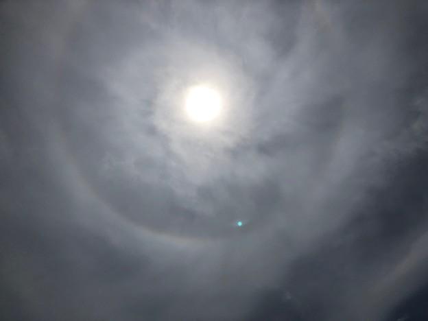 Photos: 日暈(ひがさ、にちうん)
