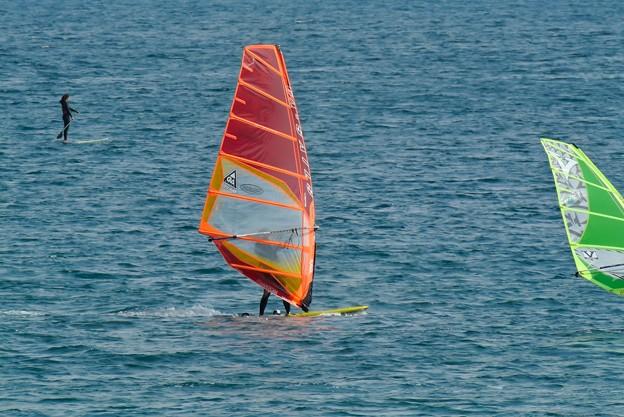 ウインドサーフィン(9)