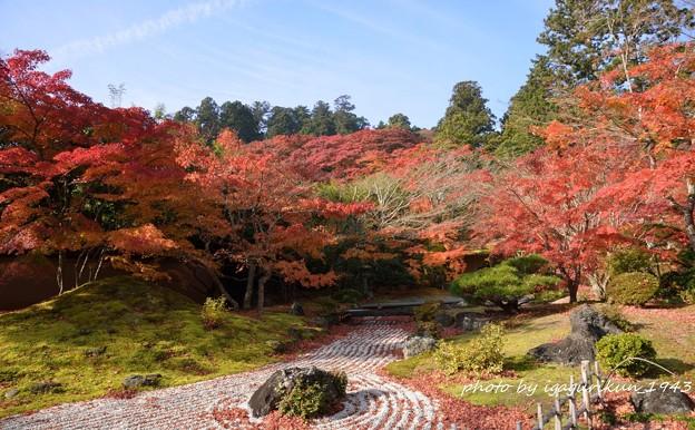 Photos: 松島園通院庭園