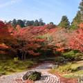 松島園通院庭園