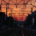 写真: 朝の風景