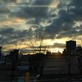 Photos: 今朝の風景