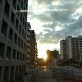 写真: 今朝の風景