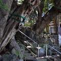 Photos: お寺