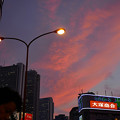 写真: 新宿の夕焼け