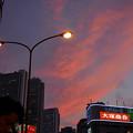 Photos: 新宿の夕焼け