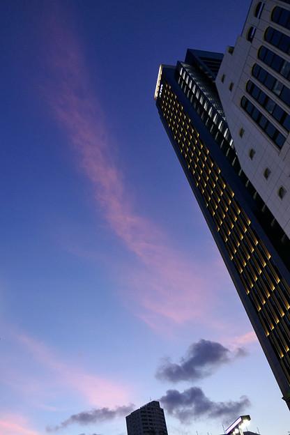 新宿の夕景