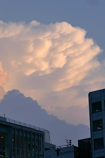 写真: 夕方の雲