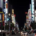 Photos: 新宿通り
