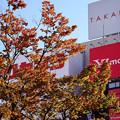 Photos: 新宿東口