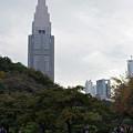 Photos: 新宿御苑にて