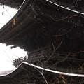 Photos: 国泰寺  三重の塔  雪化粧