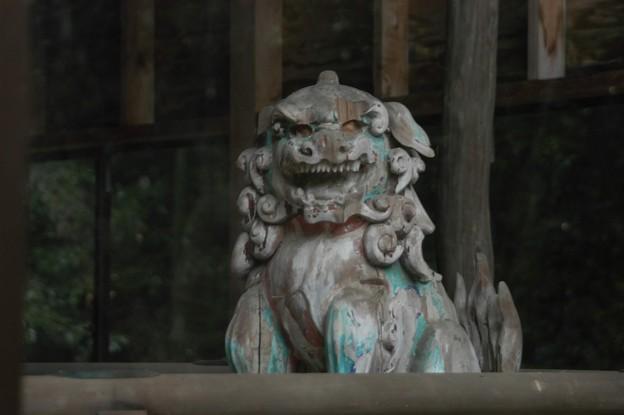 出水神社  木製の狛犬