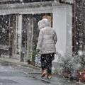 Photos: 雪の振る町に