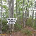Photos: yokoyama135