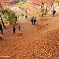 Photos: takadoya4