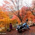 Photos: takadoya1