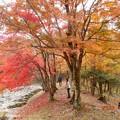 Photos: takadoya52